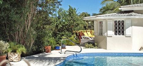 Jacaranda - Barbados