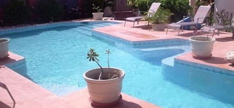 Indigo Reef - Gardenia