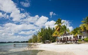 Mahogany Cove